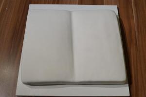 17) Über die Torte stülpen, festdrücken und zuschneiden
