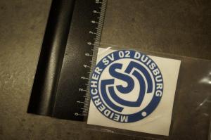 2) MSV Logo