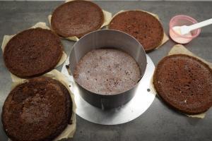 5) Böden waagerecht durch schneiden. Tortenring umstellen