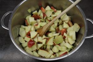 4) Äpfel in Stücke schneiden, mit Wasser und Zitronensaft erhitzen