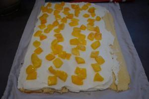 17) Danach die Quark-Creme und Mango Stücke verteilen