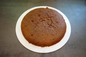 8) Den 1. Biskuit auf ein Cakeboard geben. Tortenring darum stellen