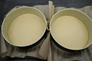 7) 2 Springformen mit Backpapier auslegen. Danach den Biskuit zubereiten