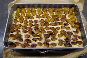9) Nun die Pflaumen-Spalten in den Teig stecken. Kuchen für etwa 40 Min. backen