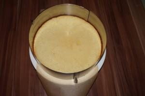 6) Unterster Boden, darauf die Creme und die anderen Böden legen. Torte einstreichen und Eindecken