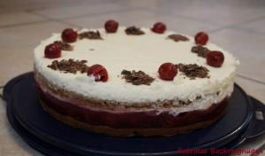Joghurt-Kirsch-Mohn-Kuchen